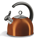 Morphy Richards Accents Whistling Kettle